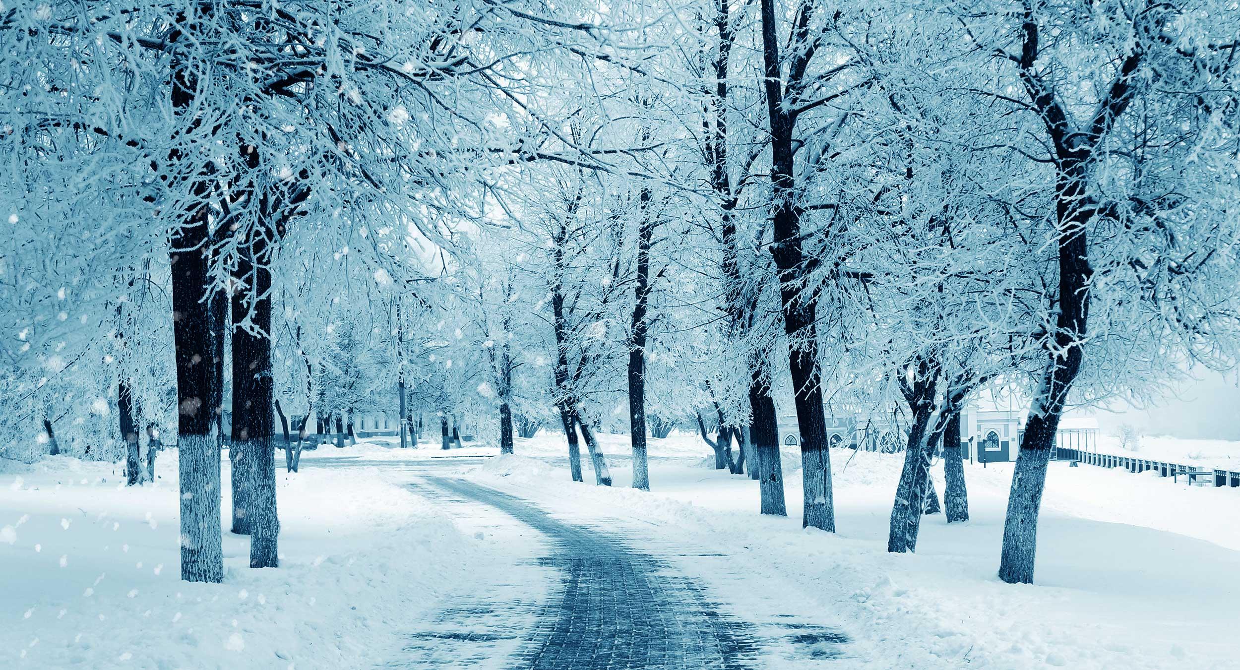 Vintervedlikehold - foto
